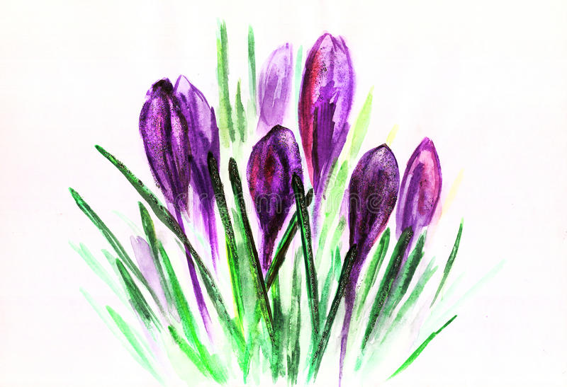 Purpurrote Tulpen des Aquarells mit Grün verlässt Zeichnung vektor abbildung