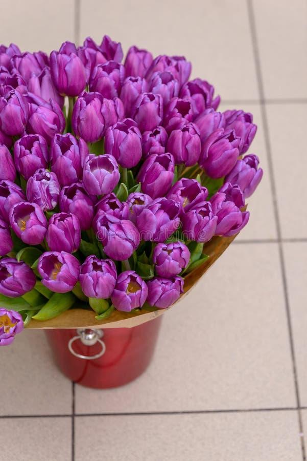 Purpurrote Tulpen im Eimer für Blumen stockfotografie