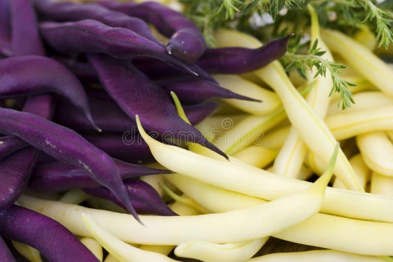 Purpurrote und gelbe Bohnen mit Krautnahaufnahme lizenzfreie stockfotos