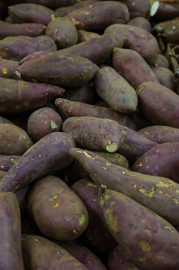 Purpurrote Vielzahl von Jamswurzeln am Landwirtmarkt lizenzfreies stockfoto