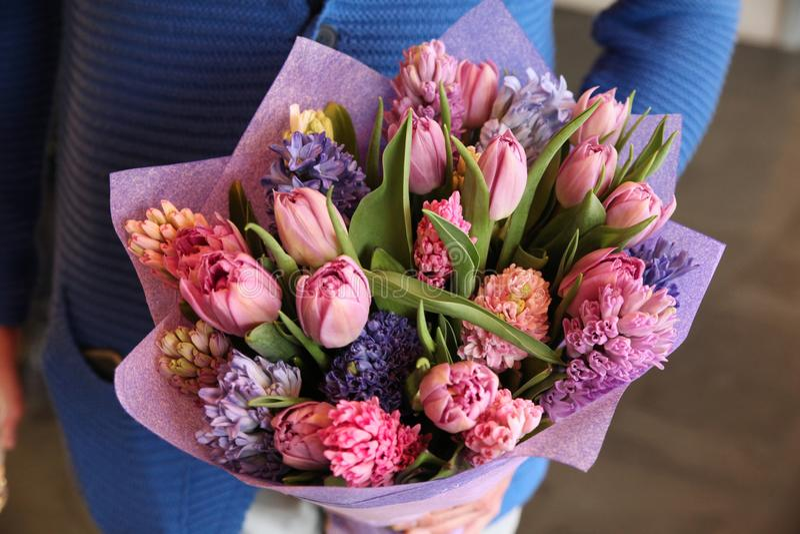 Purpurroter Blumenstrauß von Tulpen und von Iris in den Händen lizenzfreies stockbild