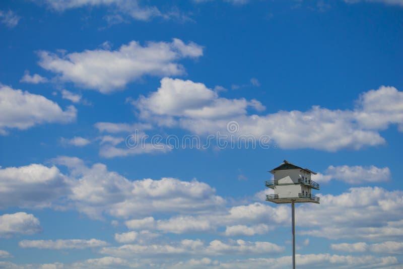 Purpurroter Martin-Vogelhaus mit einem Hintergrund des blauen Himmels stockbilder