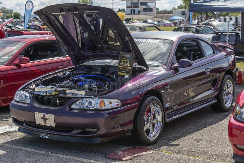 Purpurroter Mustang stockbild