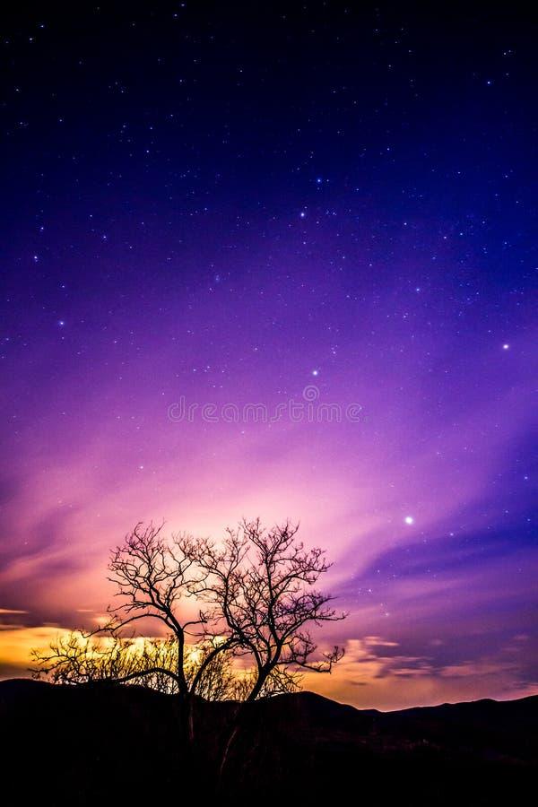 Purpurroter nächtlicher Himmel stockfotografie