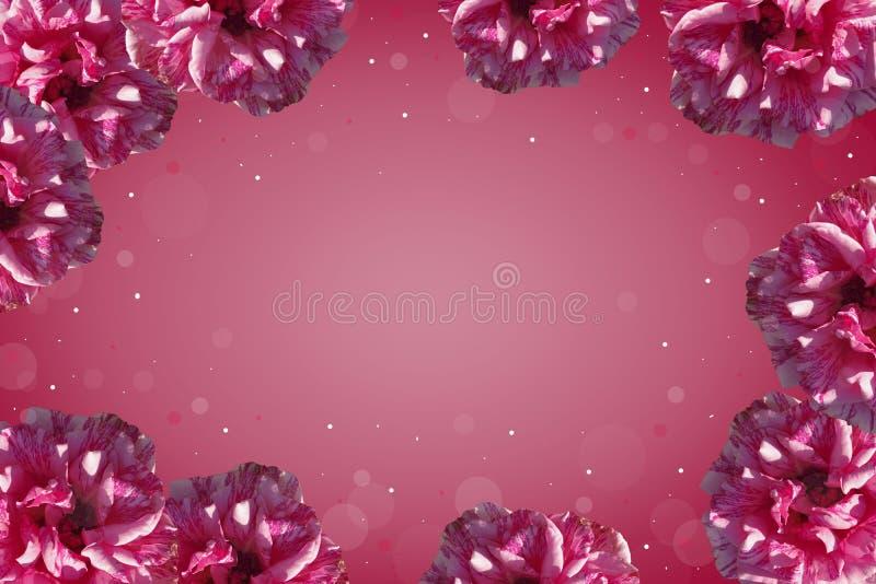 Purpurroter Rahmen von Rosen stock abbildung