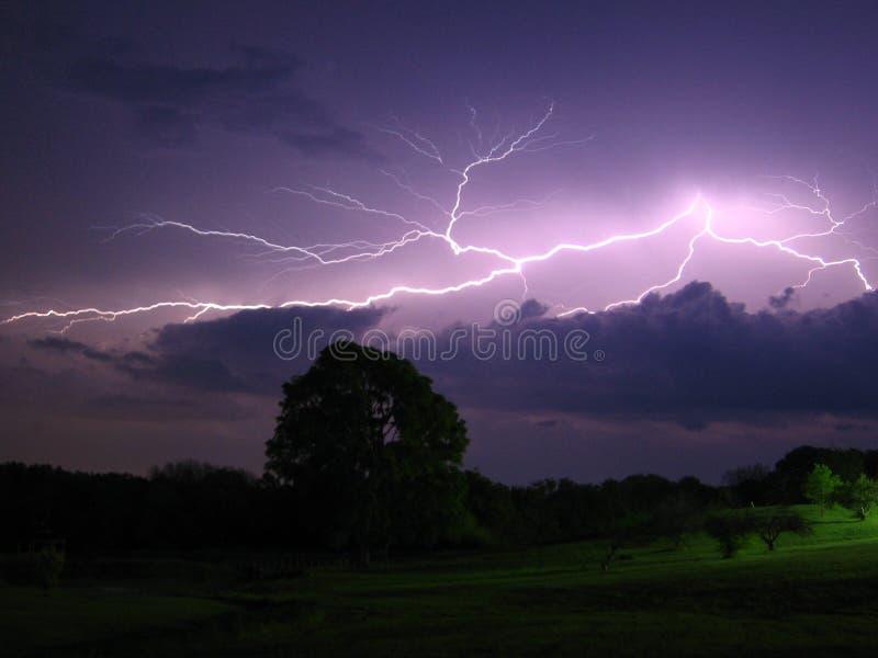 Purpurroter Sturm stockfoto