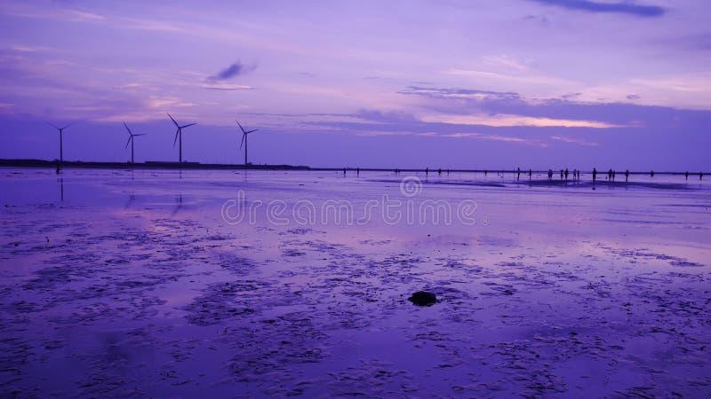 Purpurrotes Gefühl, zum des sillouette der Windkraftanlagereihe in Gaomei-Sumpfgebiet zu schießen lizenzfreies stockbild