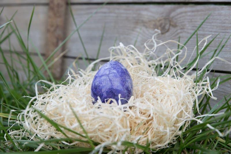Purpurrotes Osterei in einem Versteck lizenzfreie stockfotos