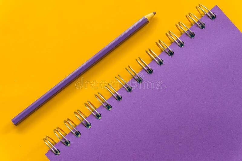 Purpury pi zdjęcie royalty free