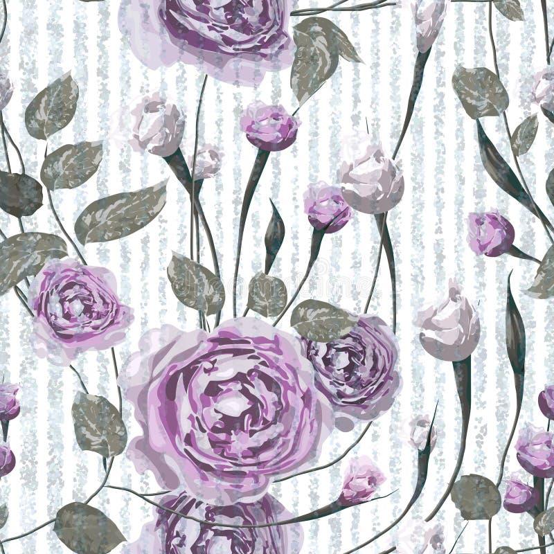 Purpury róża kwitnie z liśćmi na pasiastym błękitnym i białym tle ilustracja wektor
