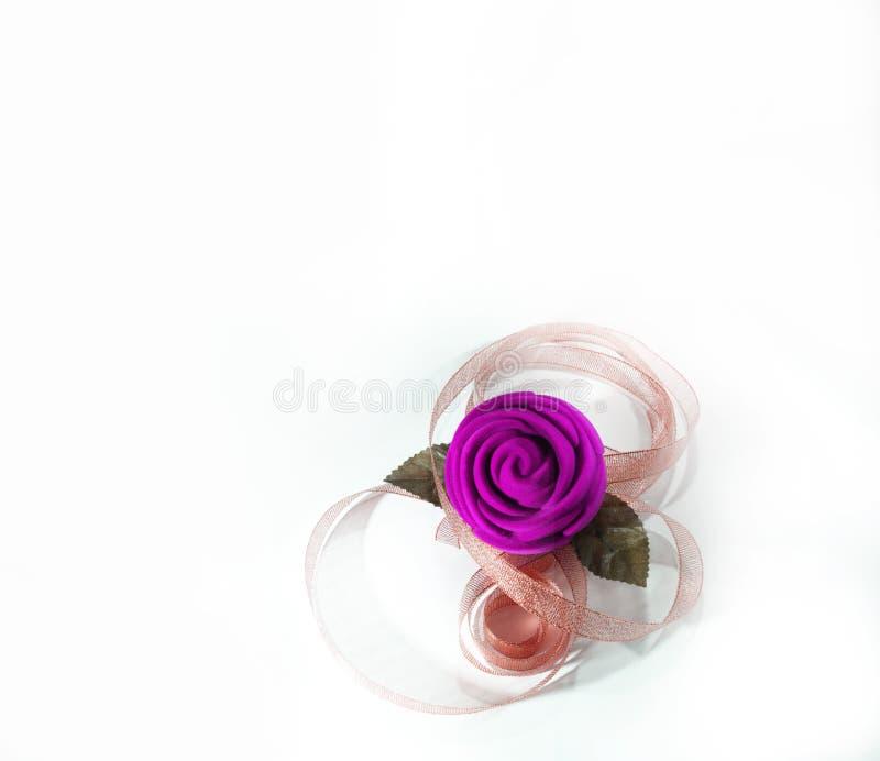 Purpury róża kwitnie z różowym faborkiem obraz royalty free