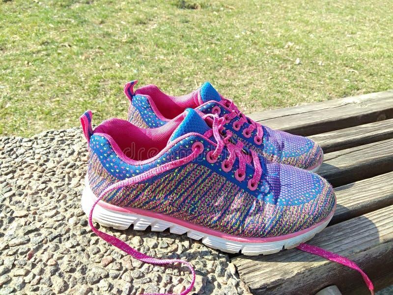 purpury women&-x27; s sneakers na drewnianej ławce w parku Wiosna park, zielonej trawy tło zdjęcie royalty free