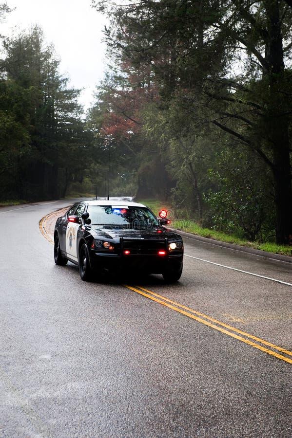 Download In Pursuit stock image. Image of lights, enforcement, responder - 8335003