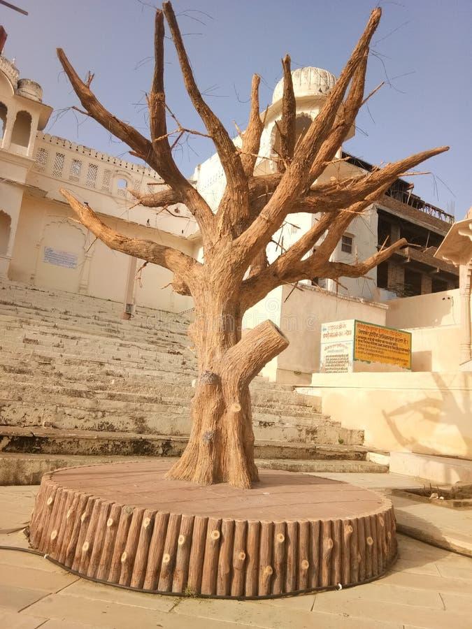 Pushkar στοκ εικόνα με δικαίωμα ελεύθερης χρήσης