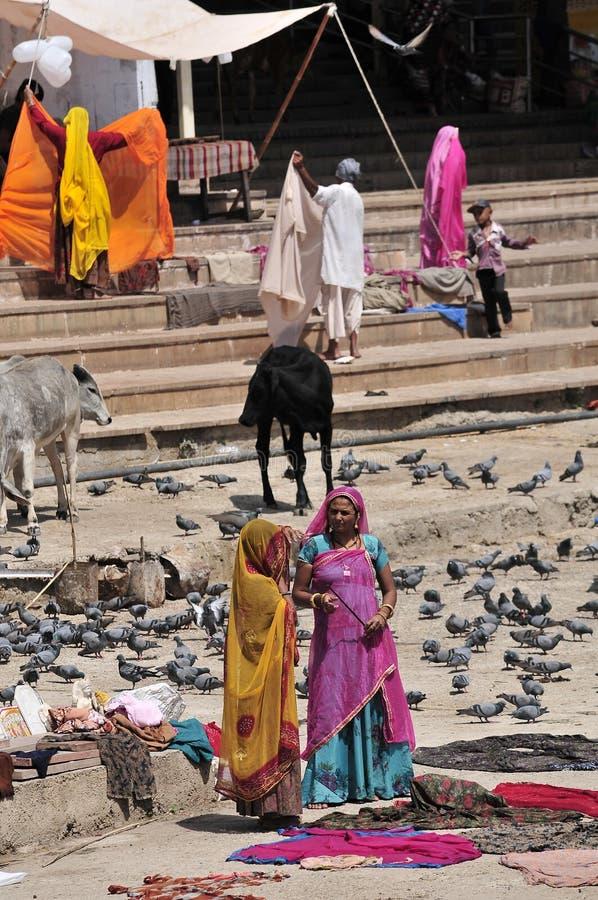 Pushkar stock photos
