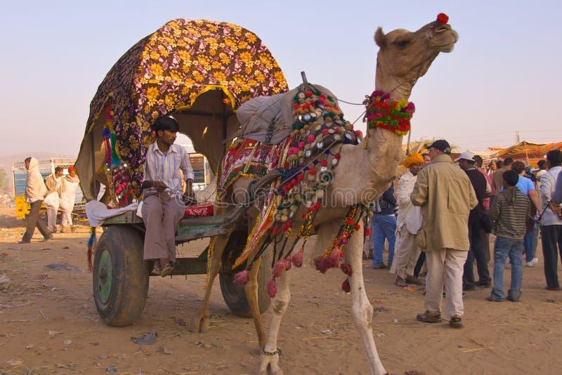 Puskar, Inde - novembre 2011 photo stock