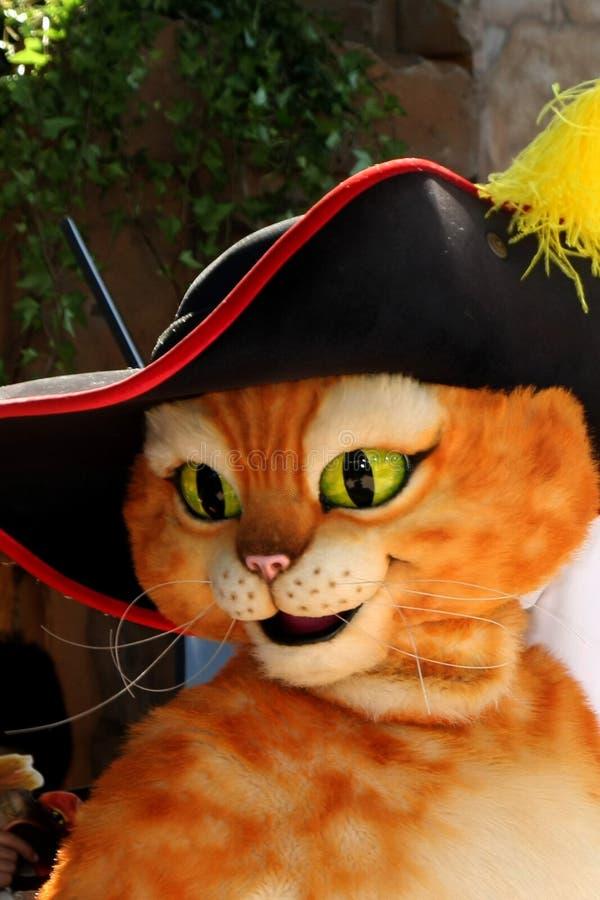Puss in Laarzen royalty-vrije stock fotografie