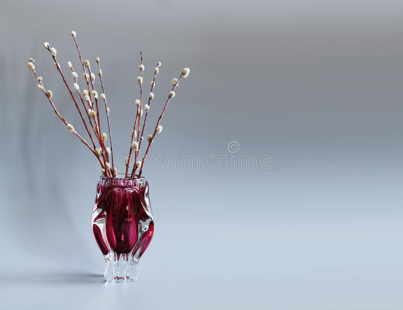 Pussy-willow tree branch in red vase. Twigs of willow, symbol Palm Sunday holiday. gray background. copy space stock photos