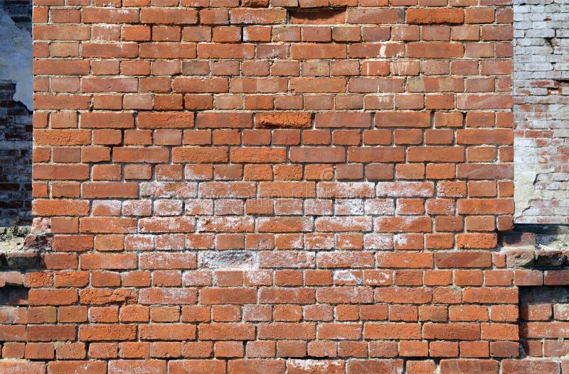 pusta cegły ściana zdjęcie royalty free