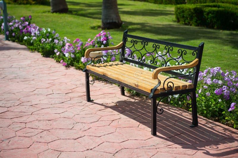 Pusta drewniana ławka blisko zielonej trawy, piękni kwiaty w parku zdjęcia stock