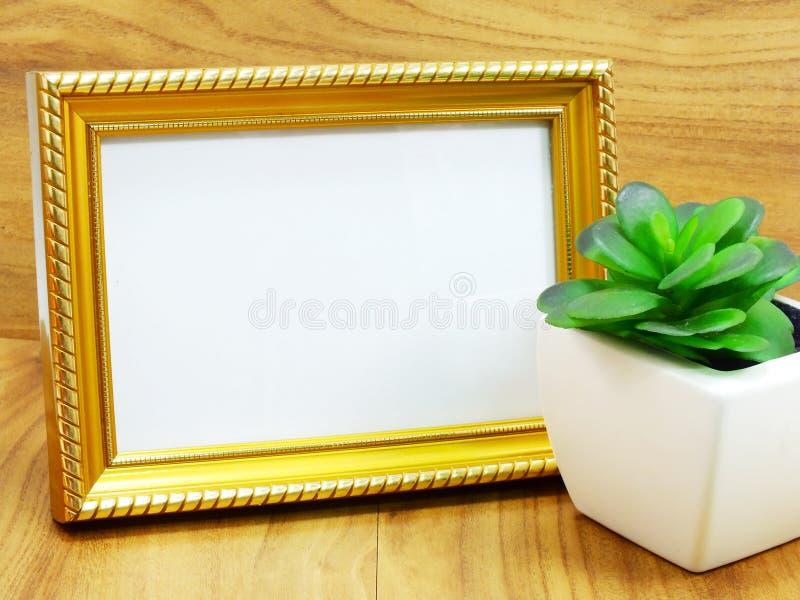 Pusta fotografii rama i sztuczna roślina zdjęcie stock