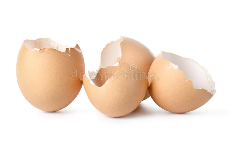 Pusta jajko skorupa zdjęcia royalty free