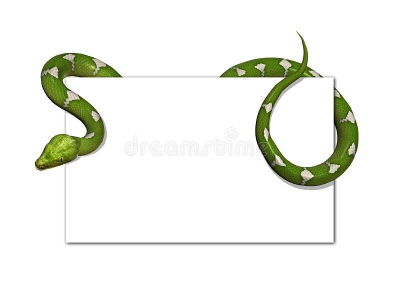 puste karty zielonego węża drzewo zdjęcia royalty free