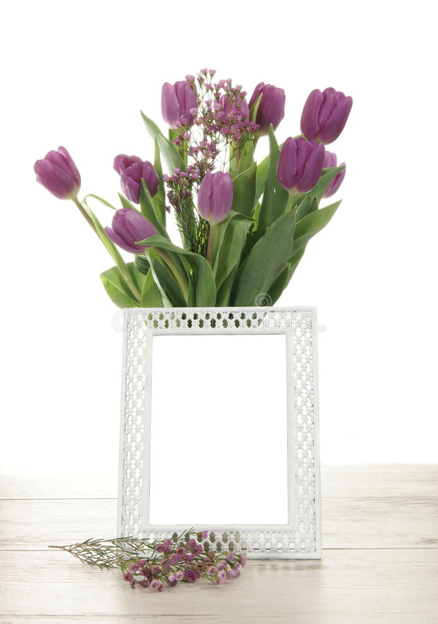 Puste miejsce rama z tulipanami fotografia stock