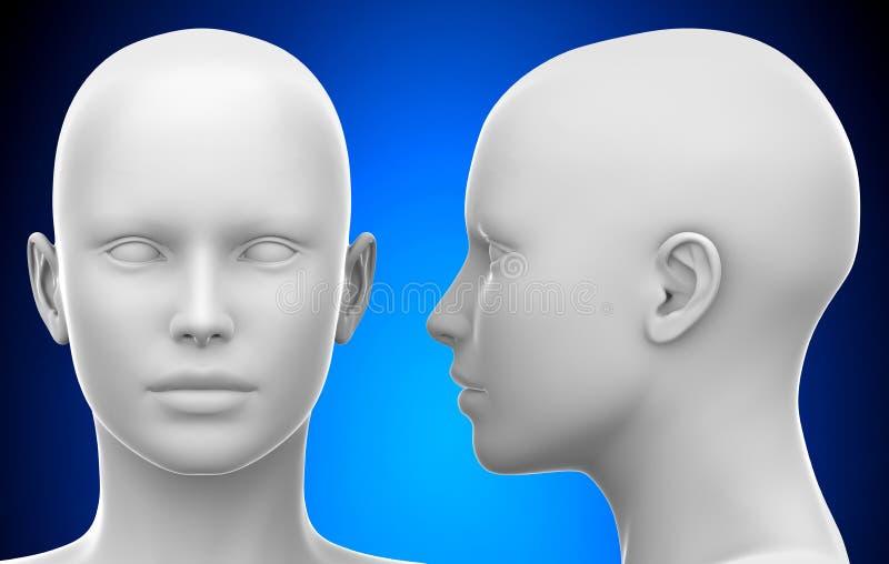 Pustej Białej kobiety głowy - Bocznego i Frontowego widoku 3D ilustracja royalty ilustracja