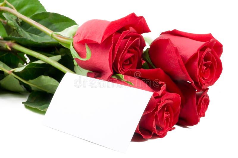 pustej karty gratulacj róże fotografia royalty free