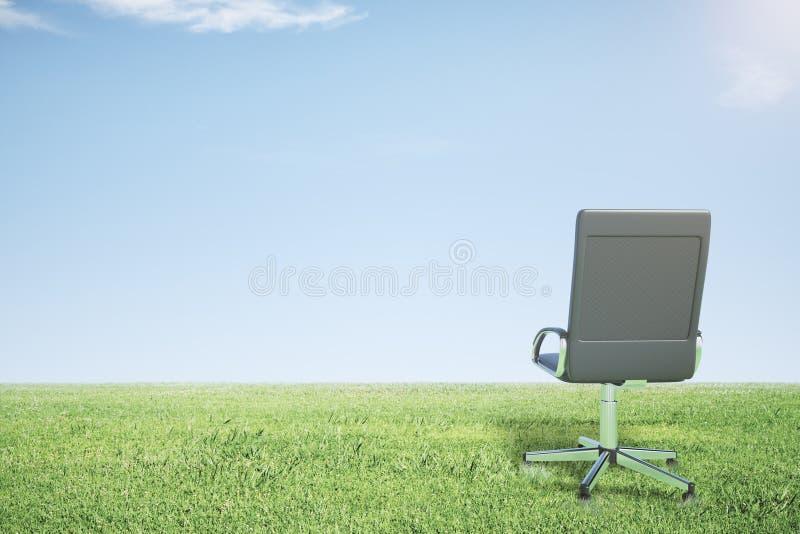 Download Pusty Biurowy Krzesło Na Zielonej Trawie I Niebieskim Niebie Zdjęcie Stock - Obraz złożonej z pomysł, nikt: 65225012