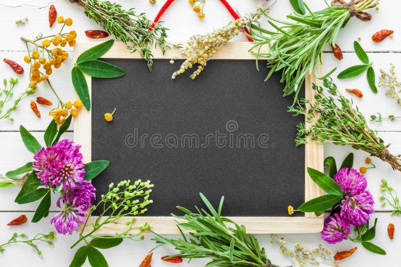 Pusty blackboard i leczniczy ziele Odgórny widok zdjęcie stock