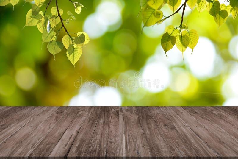 Pusty drewniany stół i zieleń liście Bonhi obrazy stock