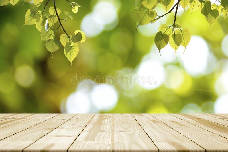 Pusty drewniany stół i zieleń liście Bonhi obwieszenie obraz royalty free