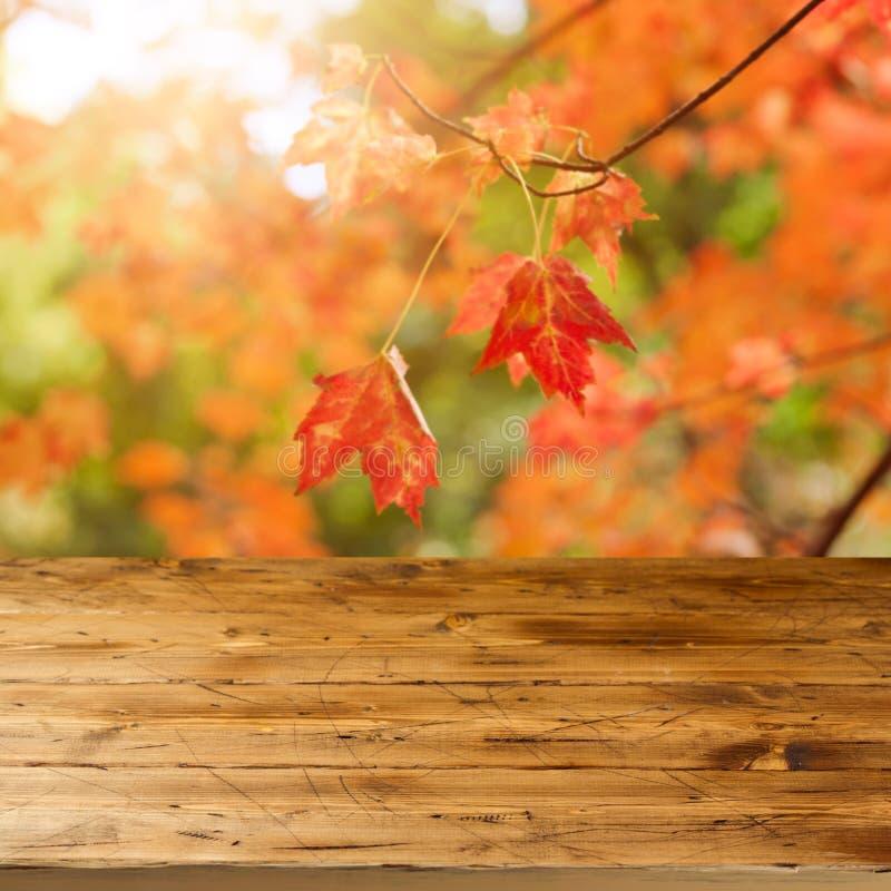 Pusty drewniany stół nad spadkiem opuszcza tło Jesień sezonu pojęcie zdjęcia royalty free