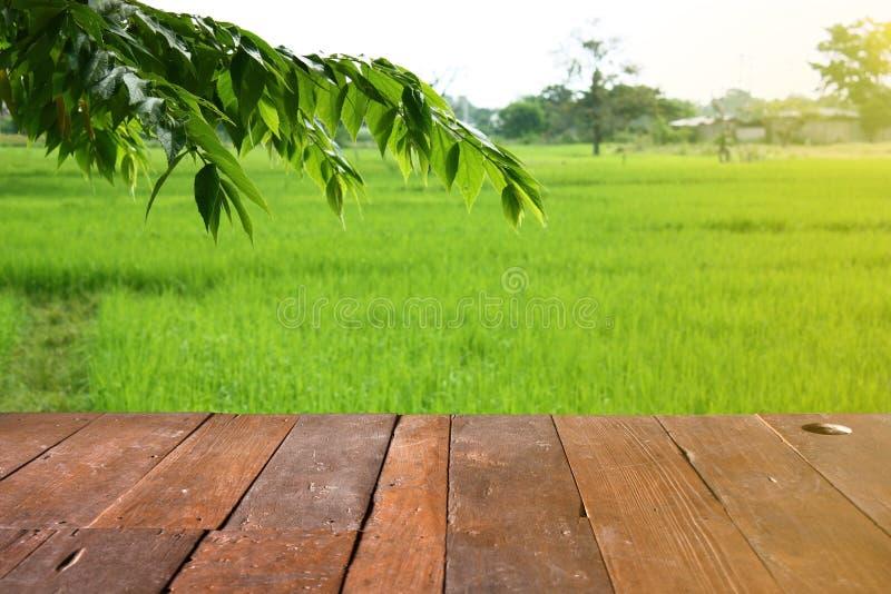 Pusty drewniany stołowy miejsce bezpłatna przestrzeń z liścia i ryż polem zdjęcia royalty free