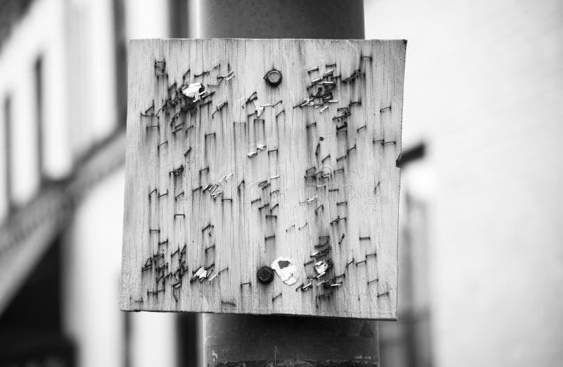 Pusty drewniany talerz obraz stock