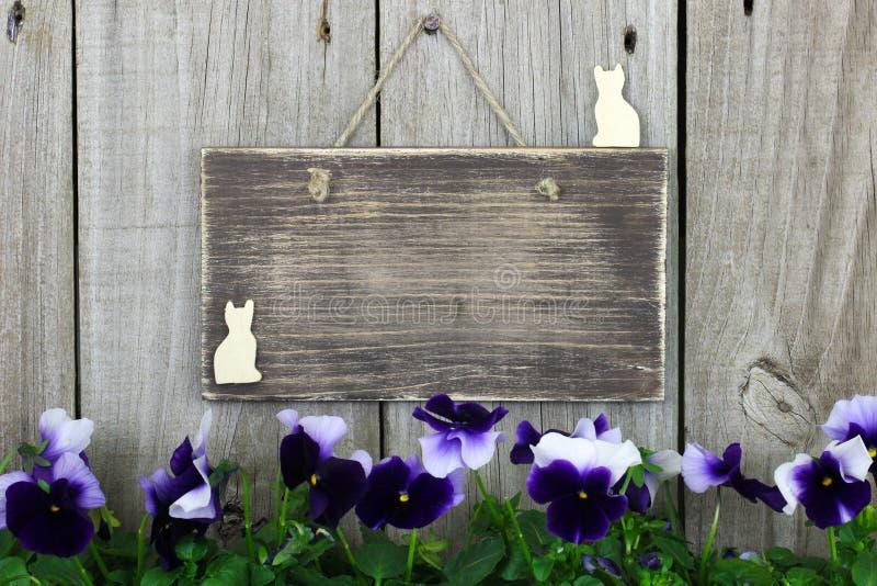 Pusty drewno znak z purpurowym flowersm (pansies) zdjęcie stock