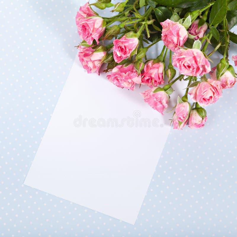 Pusty karton fotografia stock