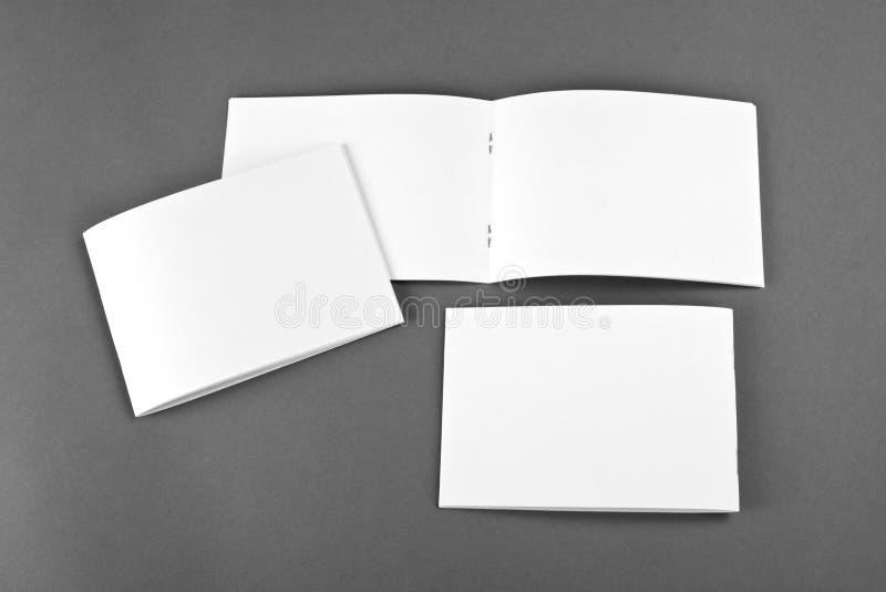 Pusty katalog, broszurka, magazyny, książka egzamin próbny up obrazy royalty free