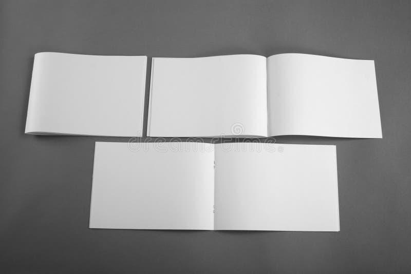 Pusty katalog, broszurka, magazyny, książka egzamin próbny up zdjęcia royalty free
