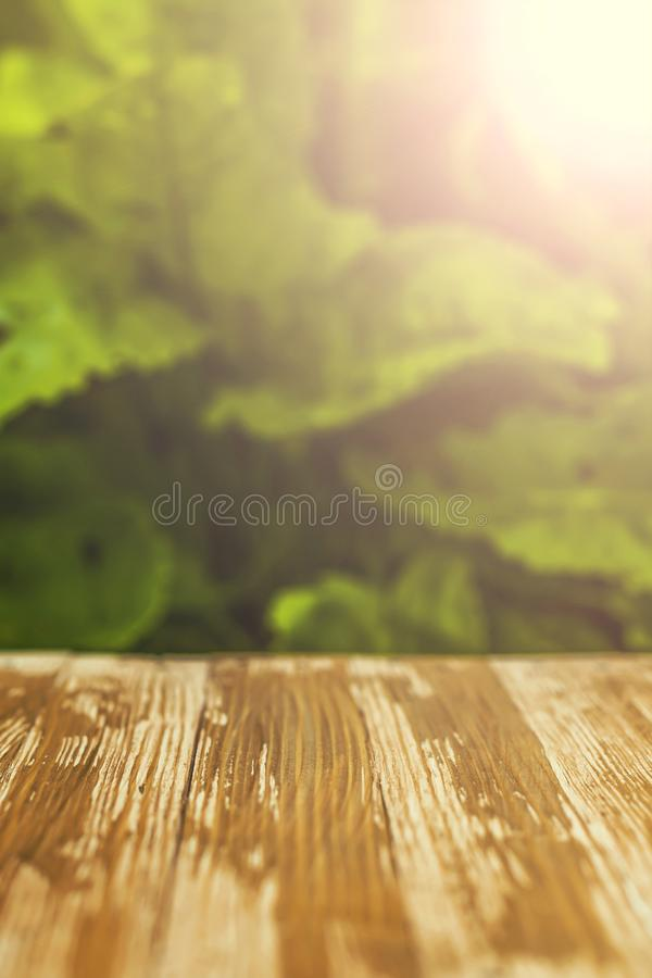 Pusty nieociosany drewniany stołowy wierzchołek na zamazanym kobylaka tle w obraz royalty free