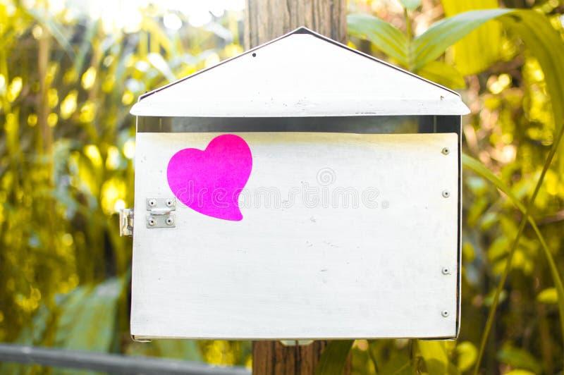 Pusty nutowy ochraniacz lub kleiste notatek menchie na poczta boksujemy z światło słoneczne półdupkami zdjęcie stock