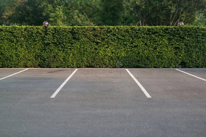 Pusty parking z ulistnienie ścianą w tle fotografia royalty free