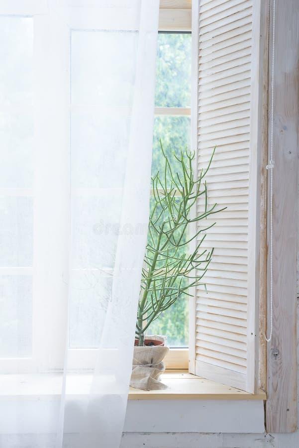 Pusty wnętrze z zieloną zasłoną na drewnianym okno i drzewem Pomysł biały pusty scandinavian izbowy wnętrze z zdjęcie stock