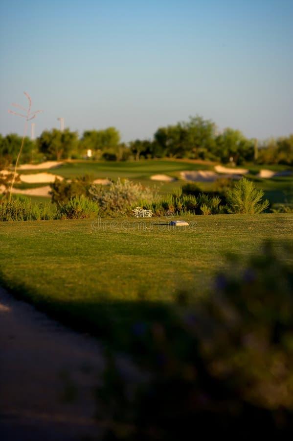 pustyni arizona kursu golfa zdjęcia stock