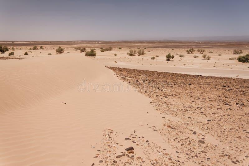 pustyni Sahara Morocco zdjęcie royalty free
