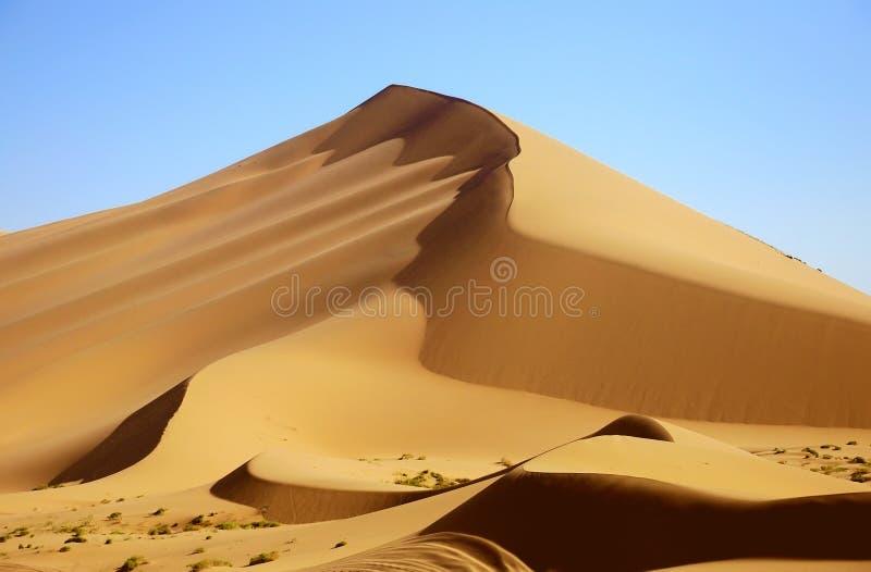 pustynia obrazy stock