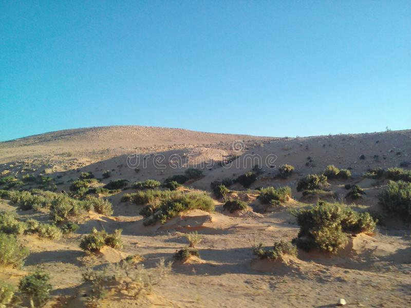 pustynia obrazy royalty free