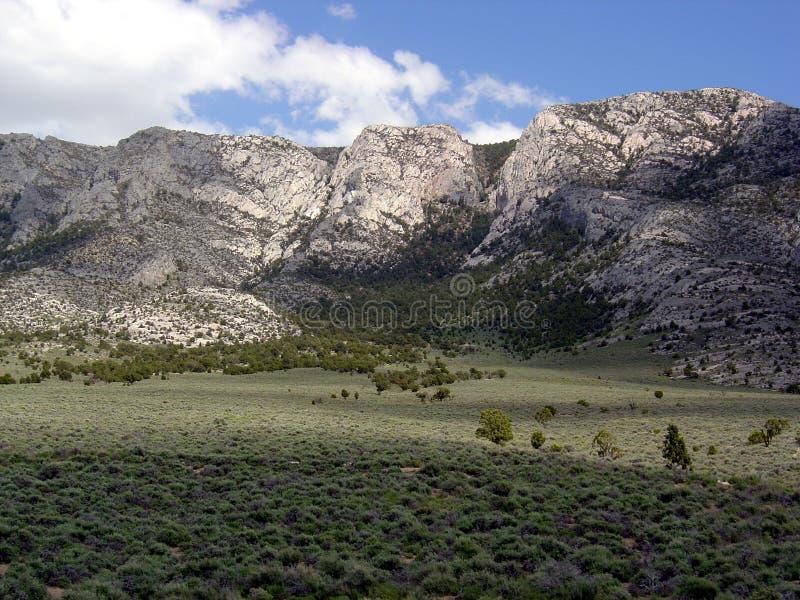 pustynia ely krajobrazowy Nevada brać obrazy stock